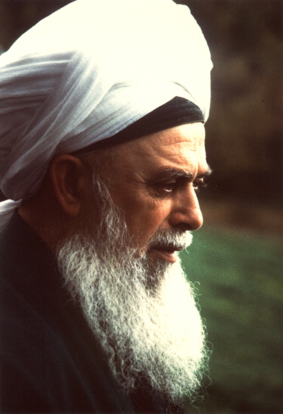 shaykh nazim 40